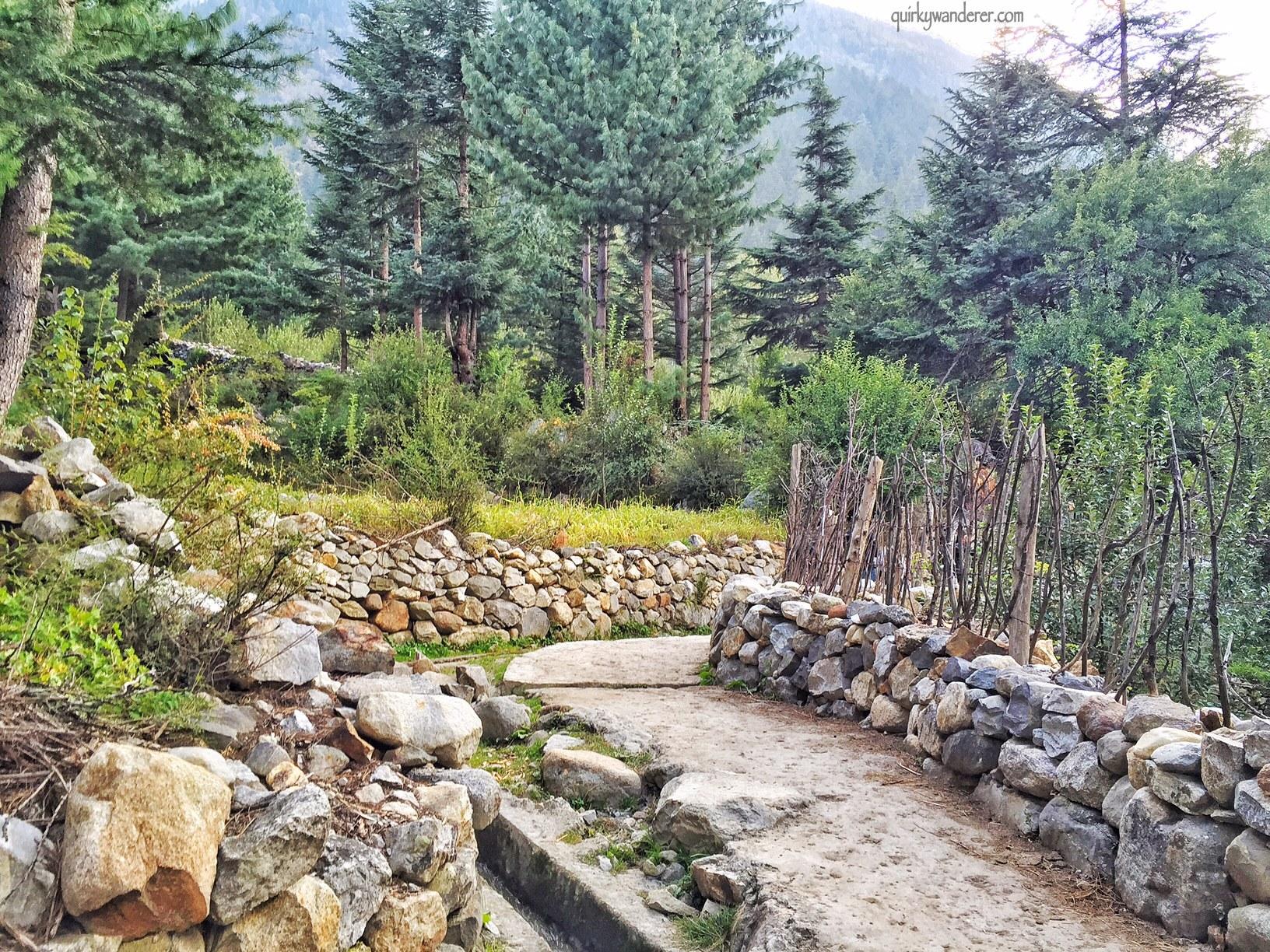 batseri-village-sangla-himachal-devbhoomi